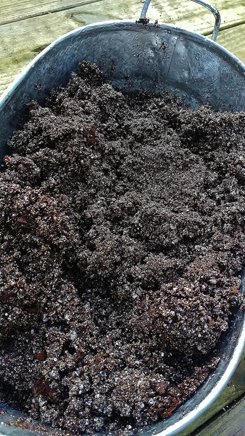 hydrated potting soil for galvanized planter