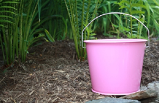 5 Quart Pink Metal Bucket