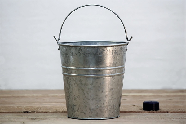 metal bucket planter