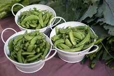 Small white pails filled with beans